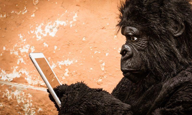 Το κινητό σου έχει… γορίλα;